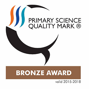 primary science bronze award 2015